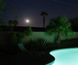 grunge, moon, and palms image