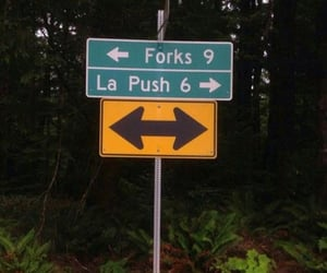 twilight, forks, and la push image