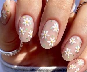 beauty, nail art, and daisy image