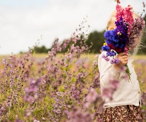 bouquet, flowers, and meadow image