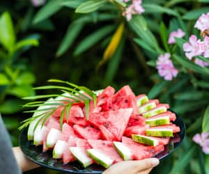 article and watermelon image
