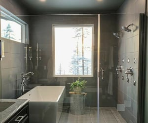 shower and views image