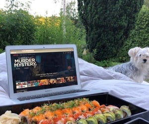 aesthetic, sushi, and dog image