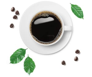 coffee, healthy, and protein image