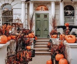 Halloween, october, and pumpkin image