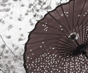 japan, beautiful, and photo image