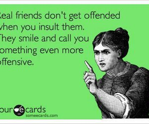 friends, funny, and insult image