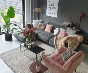home, living room, and love image