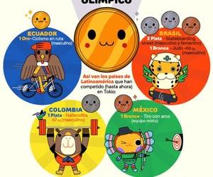 brasil, ecuador, and olympics image