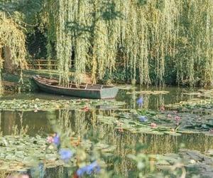 aesthetic, nature, and cottagecore image