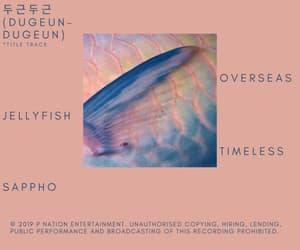 album, didi, and album tracklist image
