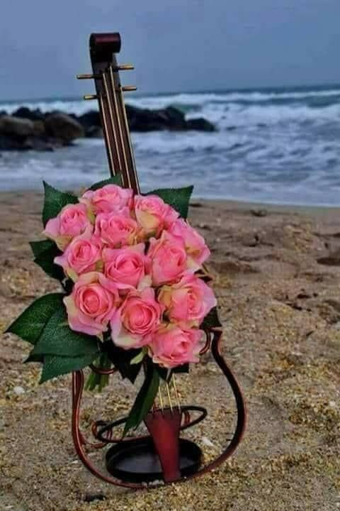 pinterest and flower image