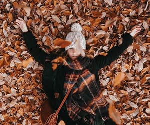 article, bon iver, and fall image