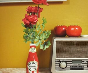 flowers, ketchup, and radio image