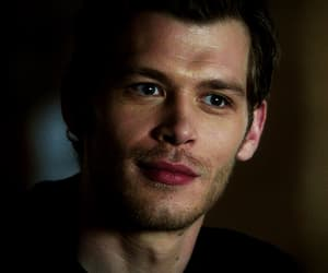 gif, the vampire diaries, and klaus mikaelson image