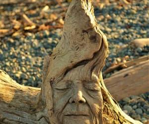 art, sculpture, and driftwood sculpture image