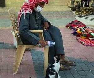 cat, صور , and رحمه image