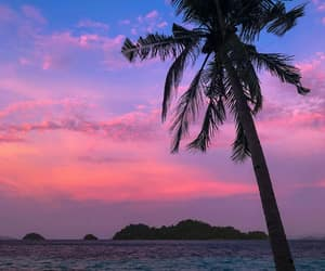 aesthetic, paradise, and pink image