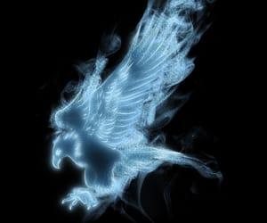 expecto patronum, eagle patronus, and patronus image