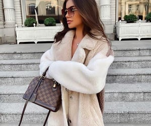 brown, chic, and designer image