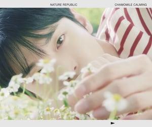 idol, kpop, and nature republic image