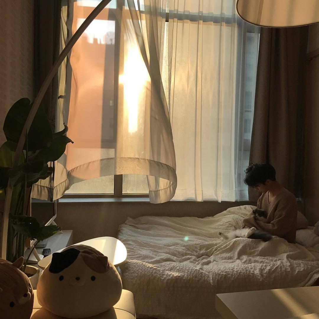 aesthetic, sun, and alternative image