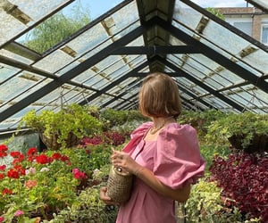 flowers, greenhouse, and cottagecore image