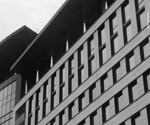 black and white, building, and grey image