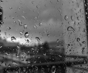 feed, rain, and grey image