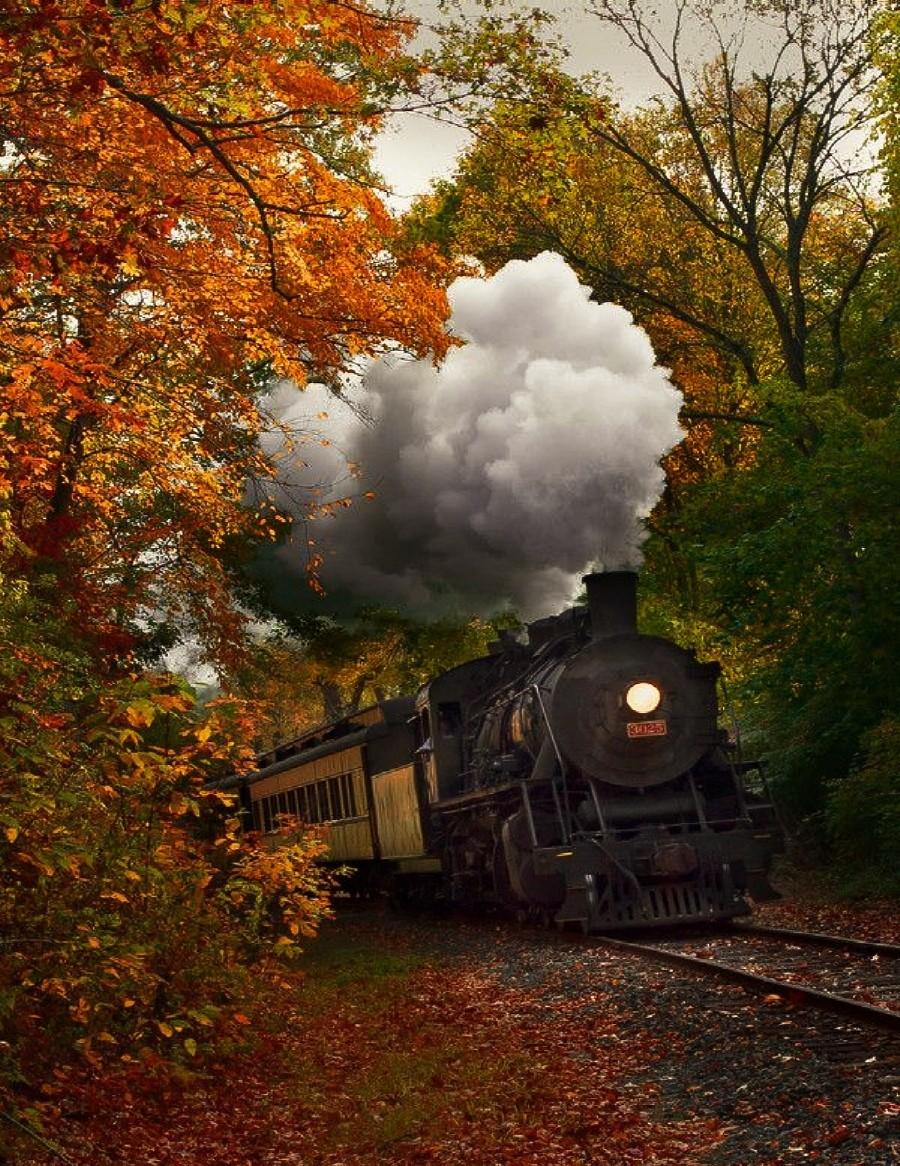autumn and train image