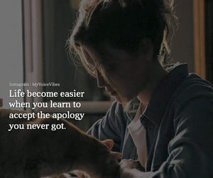 apology, life, and quotation image