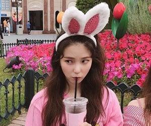bunny, icons, and kpop image