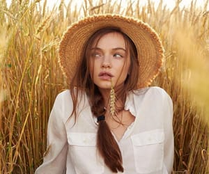 wheat field image