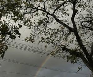 nature and raibow image