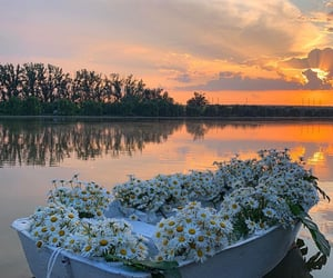 sunset, nature, and boat image