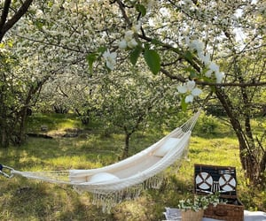 nature, picnic, and spring image