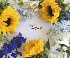 August, blue, and yellow image