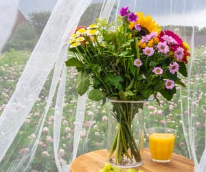bouquet, field, and flowers image