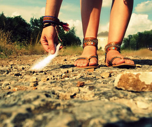 feather, feet, and nature image