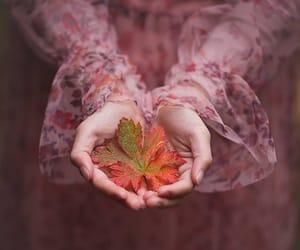 Autumn Falls ♡