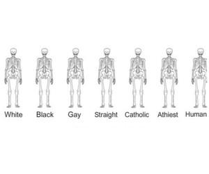 human and skeleton image