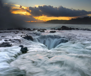 nature, water, and hawaii image