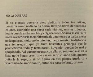 amor, desamor, and realidad image