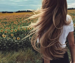 hair, nature, and sunflowers image