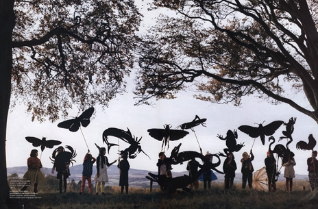 tim walker and trees image