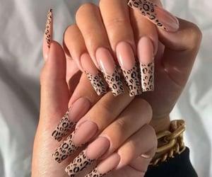 long nails, nails, and cheetah print image