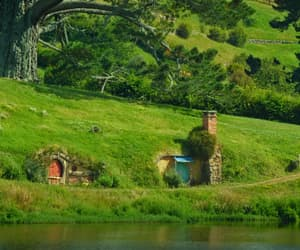 farm, green, and new zealand image