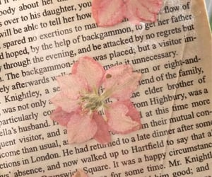 blossom, books, and flowers image