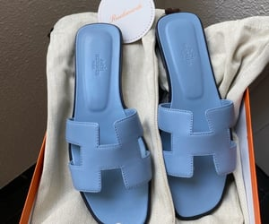 blue and hermes image