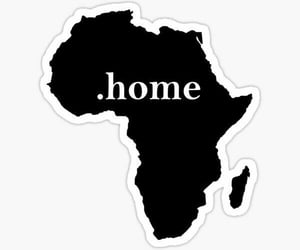 africa, Algeria, and organize image